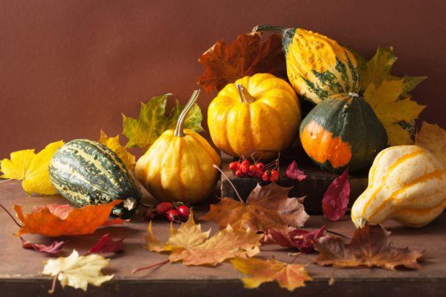 Кралица на есента – за што помага тиквата