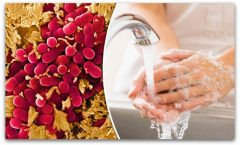 ЗАШТИТЕТЕ СЕ: Измијте ги рацете веднаш штом ги допрете овие работи
